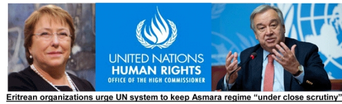 Three Eritrean Organizations Send  Memo to UN Human Rights Chief