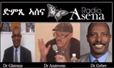 Voice of Assenna: Panel Discussion Constitution P3